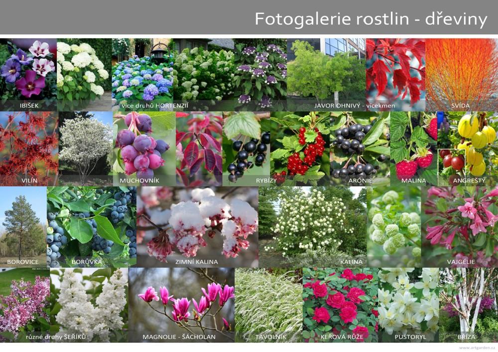 artgarden_fotogalerie